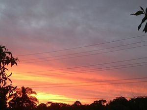 Reader images - Beautiful Sunshine Coast sunset