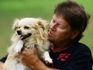 Story and adoption drive reunite owner and best mate