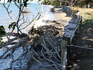 Govt has advised that erosion wall at McEwens Beach must go