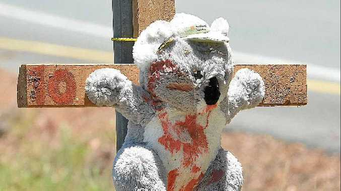 RUMOUR MILL: No-one is admitting they put toy koalas on crosses along Palmwoods School Rd.