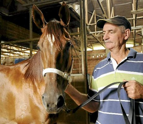 ON TRACK: Ballina's Terry McCarthy, with his horse Diadrem Trist, is hoping to have a good day at his home track today.