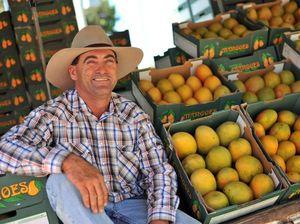 Mango farmer still smiling despite tough few years