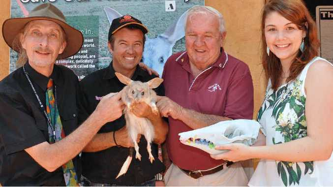 DOWN IN THE MOUTH: Scientists have gained a better understanding of severe dental problem in bilbies and how to treat them by using advanced CT scans and 3D printed models. (from left) Dr Simon Collins, Al Mucci, Frank Manthey, and Samantha Nixon.