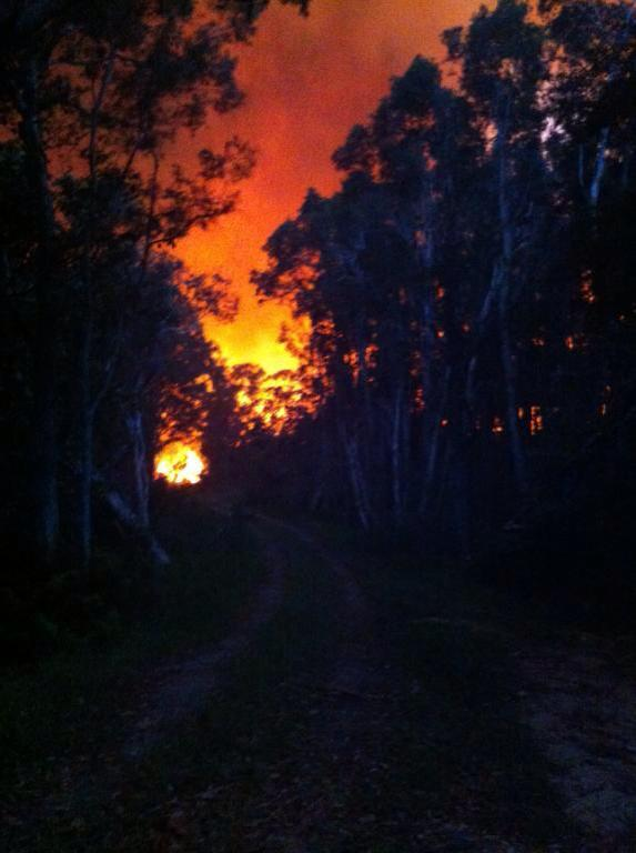 An image of the fire north of Lennox Head from the NSW RFS Facebook page.