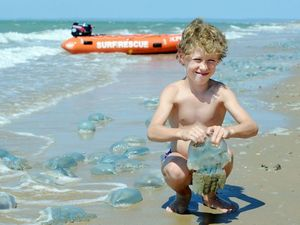 Swimmers warned as blue blubbers cover beaches