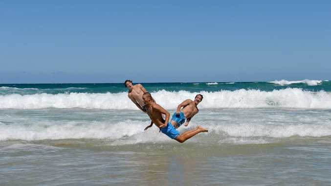 'Leaping Mullet' were seen at Coolum Beach. Photo: Warren Lynam / Sunshine Coast Daily
