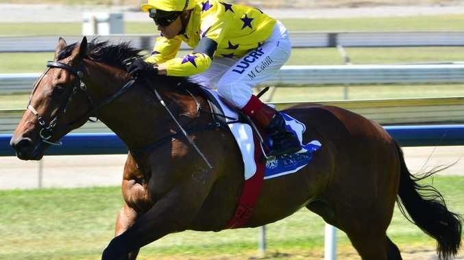 Vienna Royale scoring on debut at Doomben in October for jockey Michael Cahill.