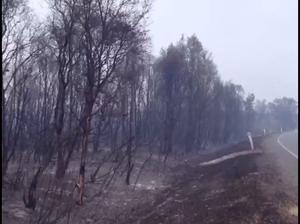 Lennox Head fire devastation