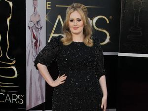 Adele announces new album '25'