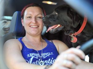 Warning: leaving pets in car for just minutes can kill