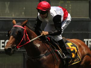 Eagle Farm to test Gold's credentials