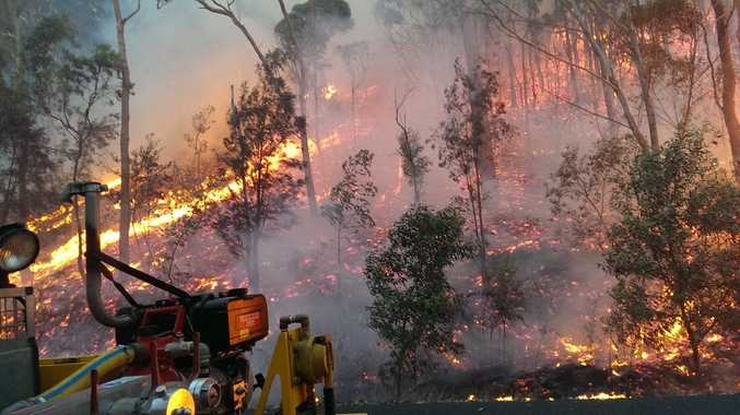 Moreton Bay Regional Council has scheduled planned back burning around D'Aguilar today.