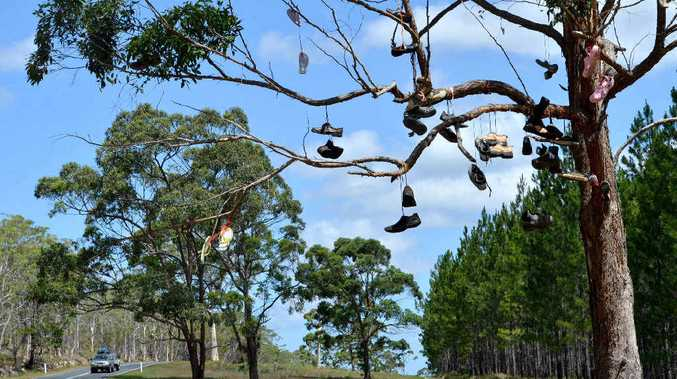 Hanging around at the Coast, our new backpackers' tree is either an eyesore or a landmark.