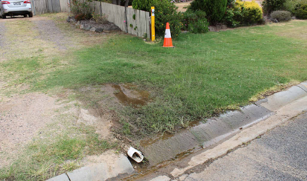 DOWN THE DRAIN: Residents are urged to report water leaking from council mains or fire hydrants promptly.