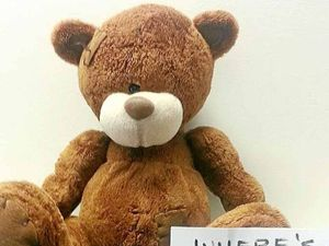 Do you know who owns Bribie bear?