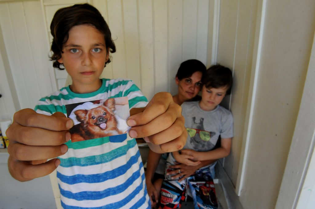 SAVAGED DOG: Kaleb Williamson holds a photo of Basil who was mauled by a neighbourhood dog. Mum Ymma and brother Jesse Williamson (back). Photo: Mike Knott / NewsMail