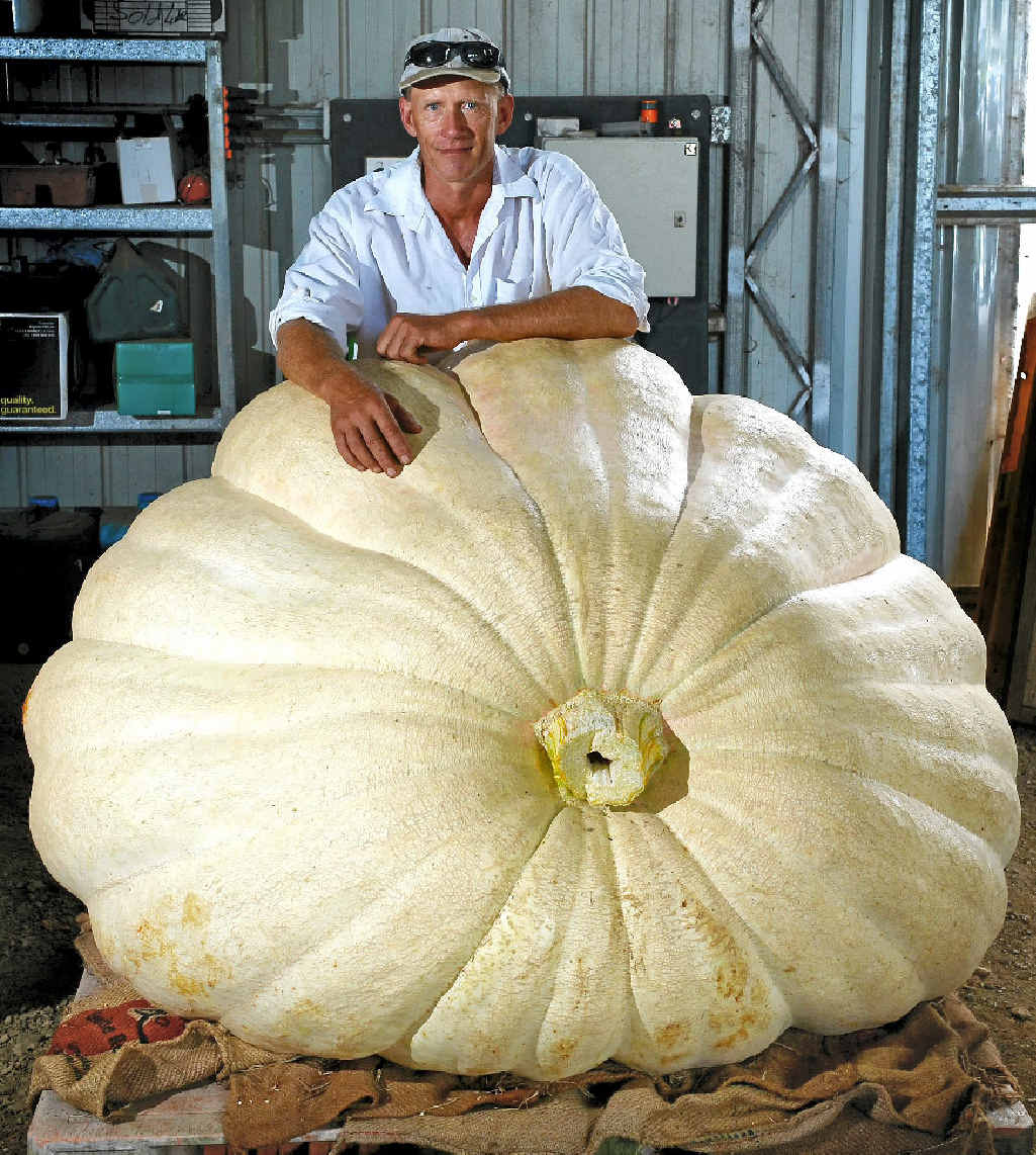 WHOPPER: Dale Oliver of Knockrow with one of his giant pumpkins.