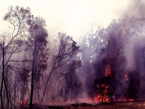 Fight to save homes in path of massive bushfire