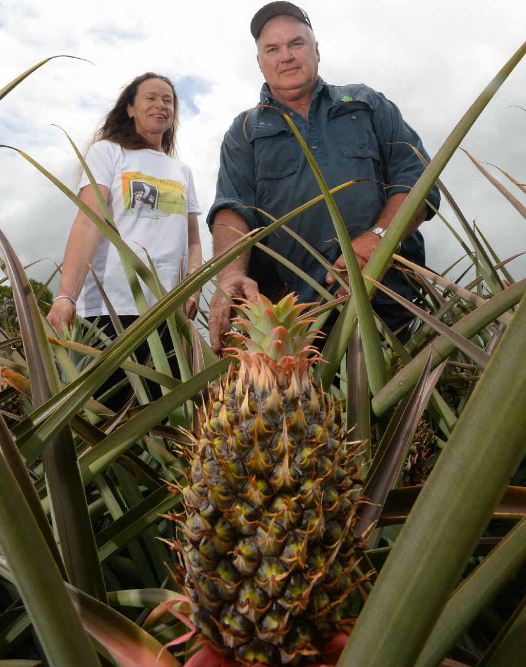 Bungundarra pineapple farmers Eliane Barben and Barry Brooks have found pineapples are not just sweet treats.