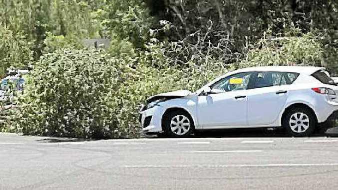 CRASH SITE: A tree came down after a crash at Mudjimba.