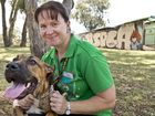Toowomba's RSPCA shelter best in Queensland