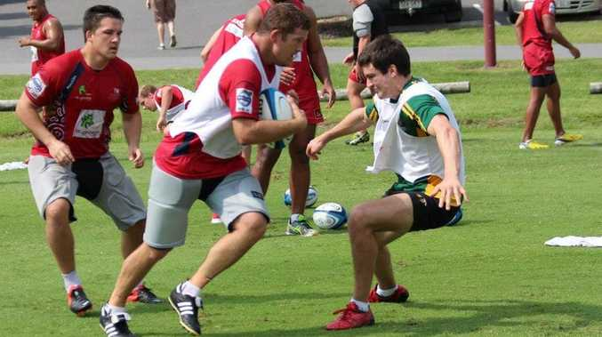 Downs Rugby player Paul Maguire moves in to tackle Greg Holmes during a Reds pre-season training session.