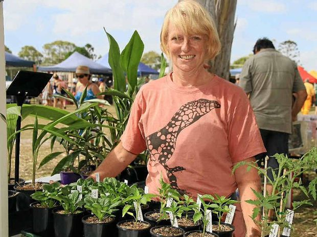 SIGN ME UP: Helen Robertson at Iluka Markets with her heritage vegetable seedlings.