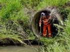 THOROUGH: SES personnel search bushland in Redbank.