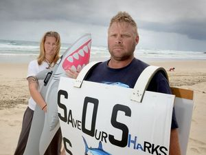 Protest against shark culling in Kingscliff on Saturday