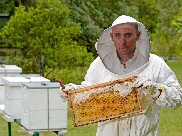 Luke Page with some of his Bee's outside of Murwillumbah.