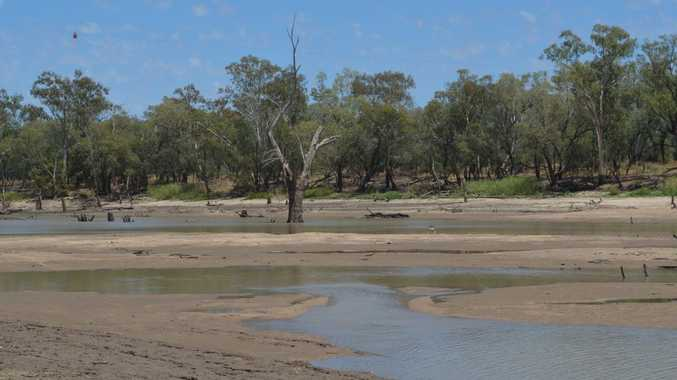 The small trickle of water left in the Balonne River at St George is swiftly drying up as the drought continues across the west.
