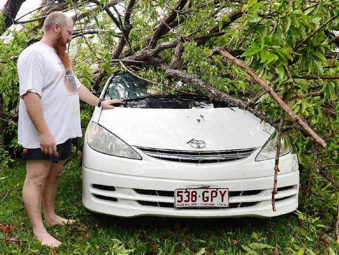 Mark Loadsman shows where a tree fell on his car.