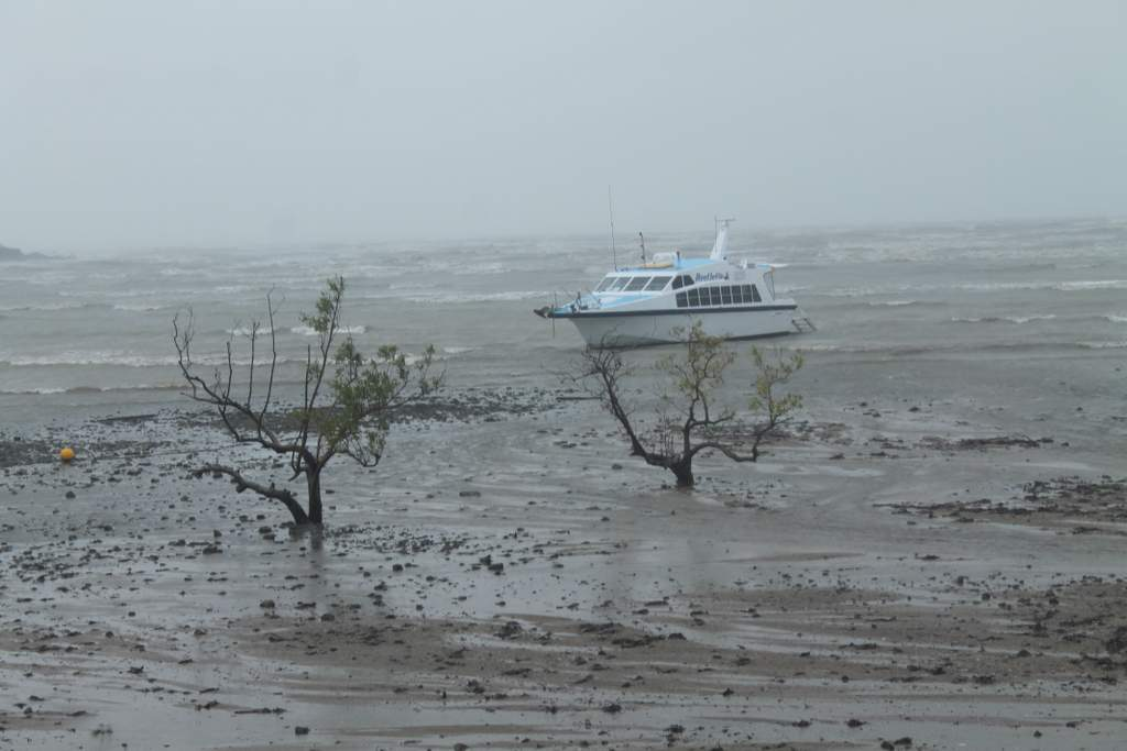 Wild weather in the Whitsundays on Friday after ex tropical cyclone Dylan.