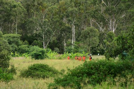 Police and SES volunteers continue the search for missing person Constance Cafarella in bushland surrounding the Collingwood Park area. Photo: David Nielsen / The Queensland Times