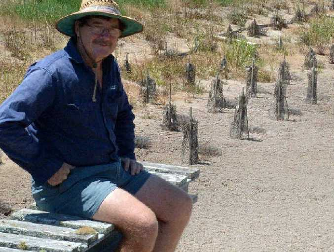 HIGH AND DRY: Redclaw farmer Bill Keast sits on the jetty and contemplates his dry crayfish ponds.