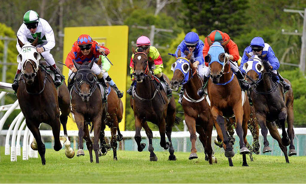 ON TRACK: The field rounds the bend in the Bestmark Insurance brokers 2200m race at Bundamba Turf Club on Friday, January 31.