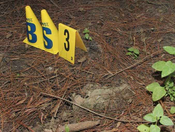 A photo submitted as evidence in court showing where Daniel Morcombe's shoe was allegedly found in the Glasshouse Mountains area.