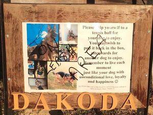 Vandal defaces dog lover's public memorial, steals balls