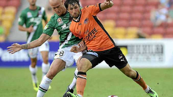 CLASH: Thomas Broich, of the Roar, and Ruben Zadkovich, of the Jets, challenge for the ball at Suncorp Stadium yesterday.