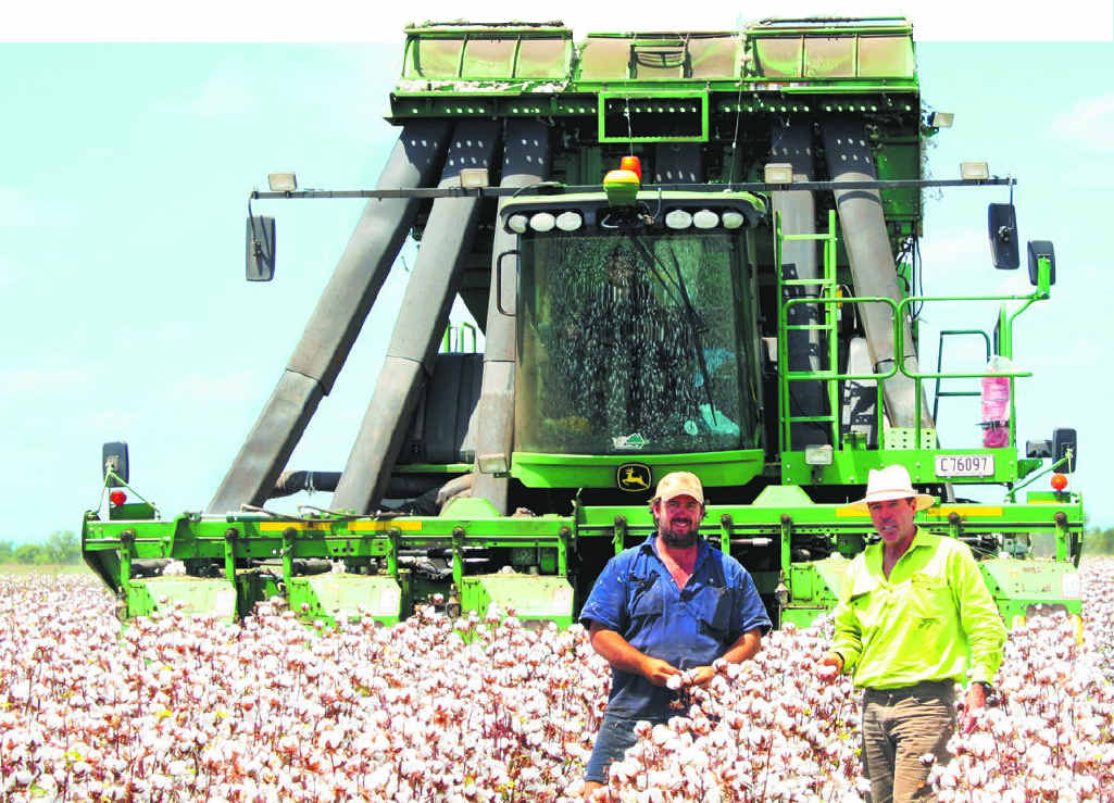 TOP YIELD: Graham Volck (right) and Sam Dawson inspect their bumper cotton crop.