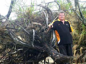 Bucasia boaties urged not to moor vessels to trees
