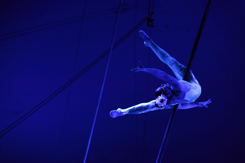 Acrobatics at the circus. Photo: Claudia Baxter / The Queensland Times