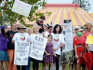 Protestors target circus over use of animals in performances