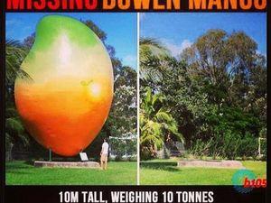 Memes of the missing mango