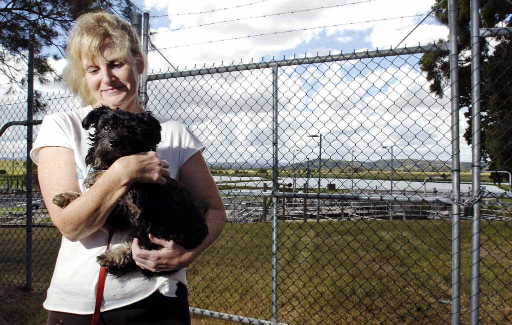 CLOSE SHAVE: Suzanne Lewis, from Animal Rights and Rescue, cuddles Peppi the blind poodle cross that was found close to death in a treatment tank at the South Lismore Sewage Treatment Plant after he was suspected of being dumped by his owners.