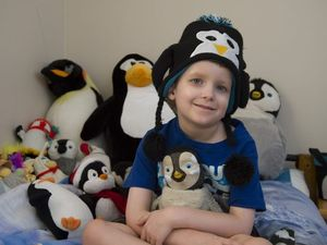 Boy with leukaemia's simple wish - to meet a penguin