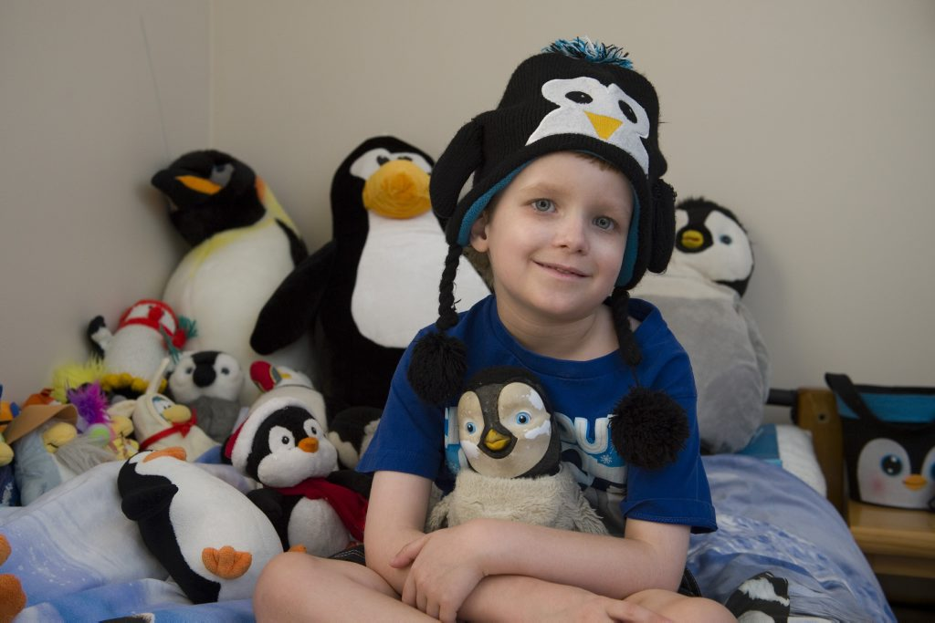 Blake Walker loves penguins so much that Make-A-Wish foundation are taking him and his family to Phillip Island to visit the fairy penguins.
