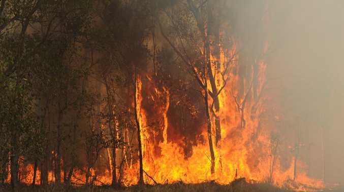 A prolonged fire season is expected for Queensland with hot and dry conditions brought on by the El Nino weather phenomena.