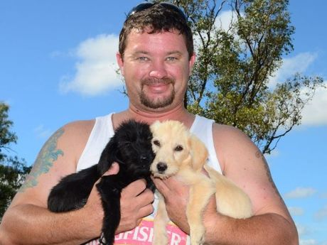 Luke with the two pups rescued from the Warrego Hwy.