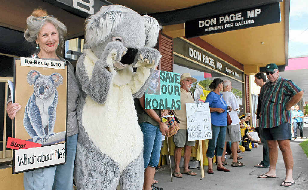 BETTER ROUTE: Friends of the Koala president Lorraine Vass with a furry friend and others lobbying Don Page to help save an important koala population along the Woolgoolga to Ballina highway upgrade.